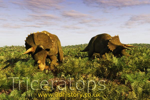 Triceratops was a Ceratopsian dinosaur from the Cretaceous Period
