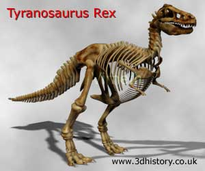 Tyrannosaurus had hollow bones that were strong and light.