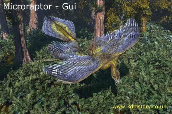 Microraptor gui is believed to be an ancestor of the birds from the early part of the Cretaceous period