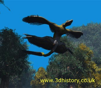 Microraptor may have been able to sustain level flight but probably glided more often than not
